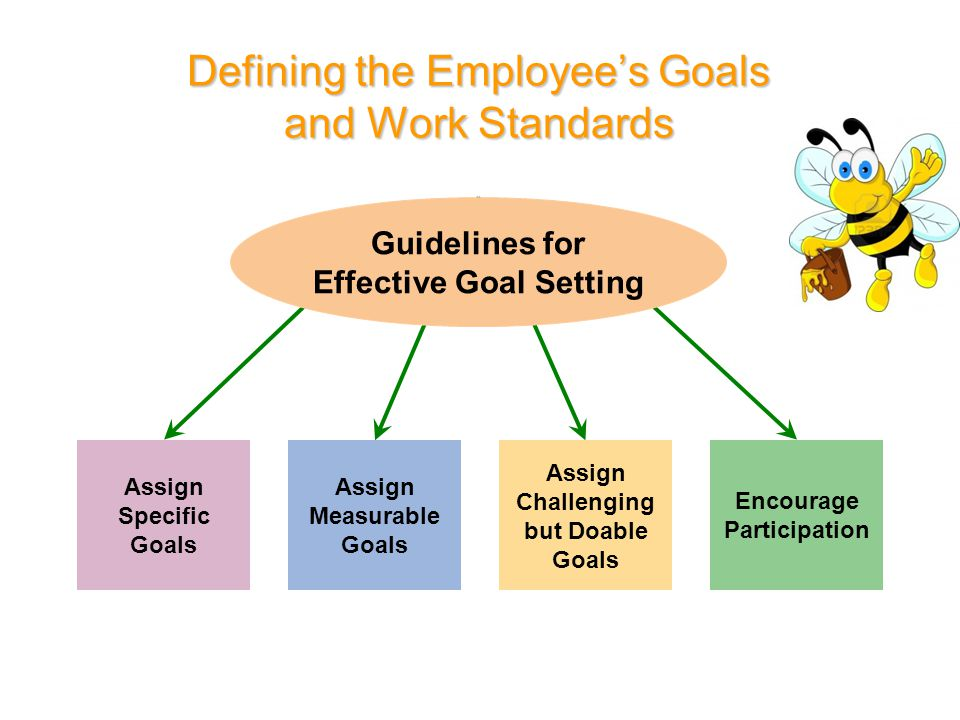 Defining the Employee's Goals and Work Standards