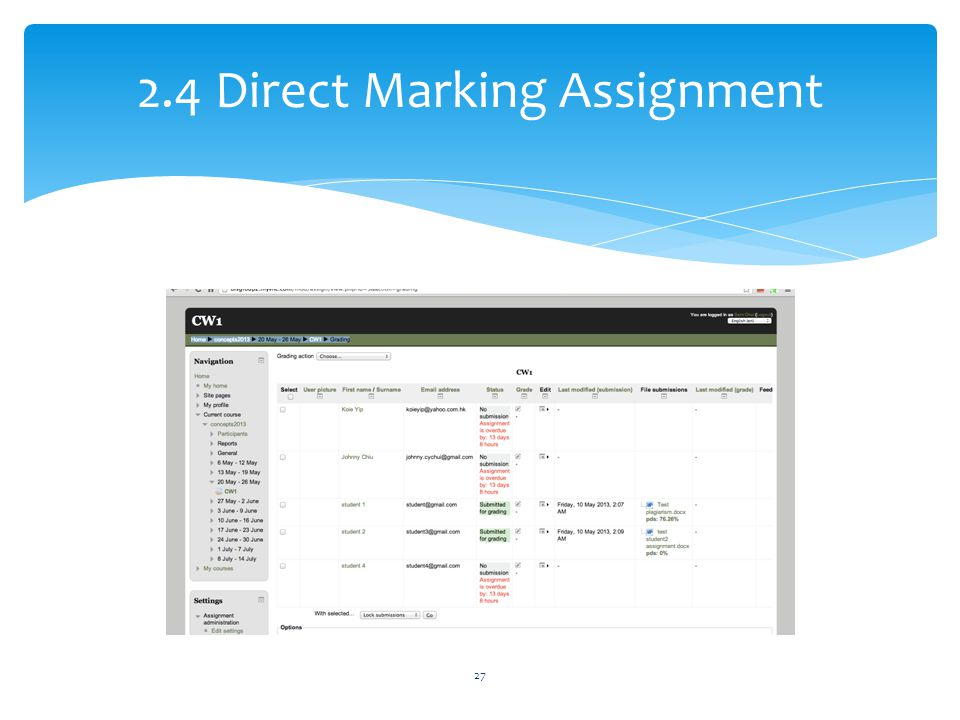 2.4 Direct Marking Assignment