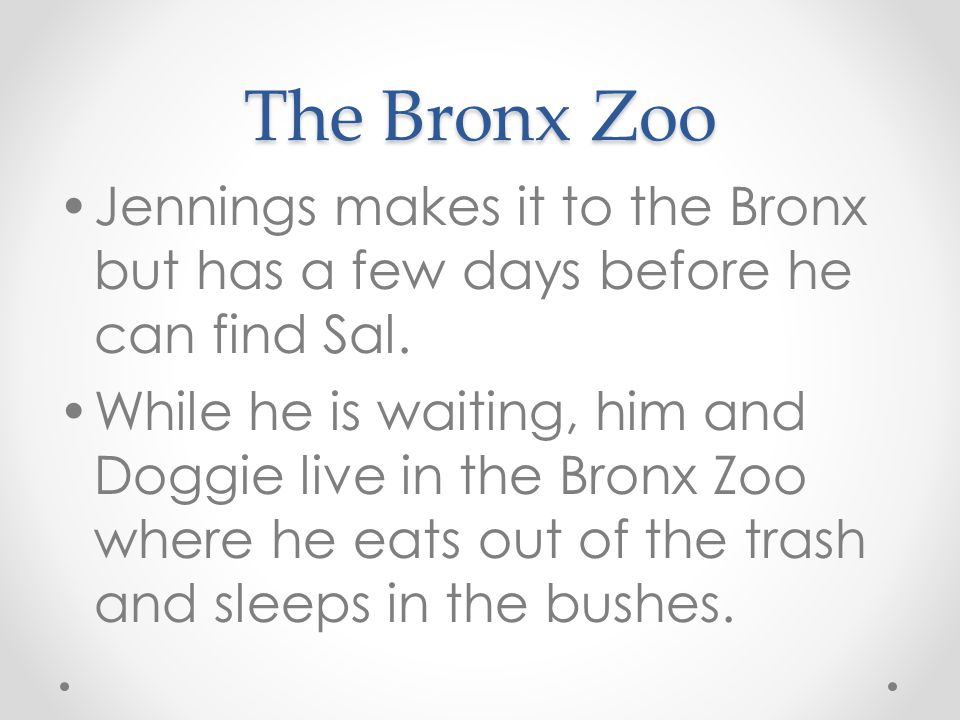 The Bronx Zoo Jennings makes it to the Bronx but has a few days before he can find Sal.