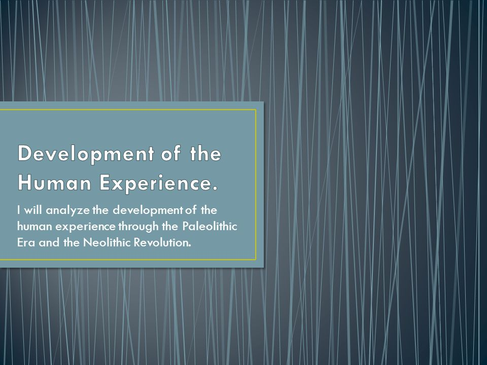 Development of the Human Experience.
