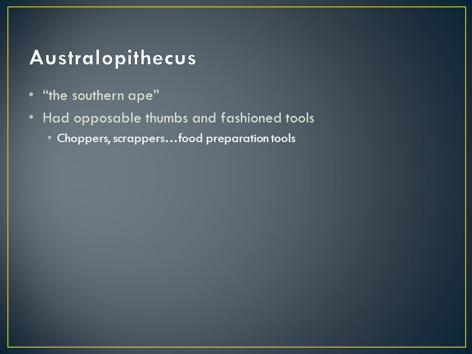Australopithecus the southern ape