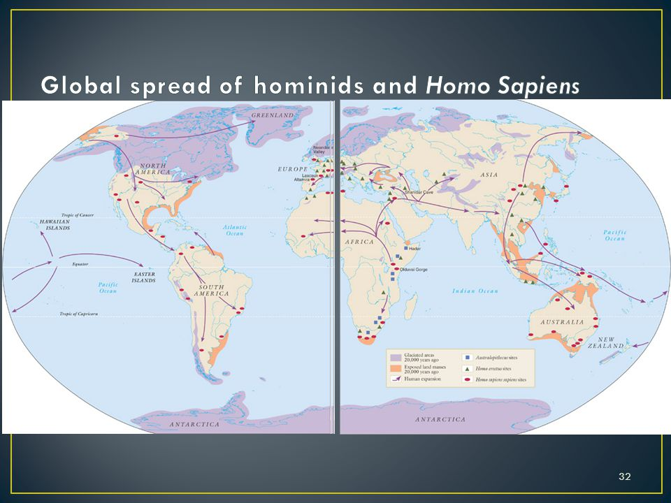 Global spread of hominids and Homo Sapiens