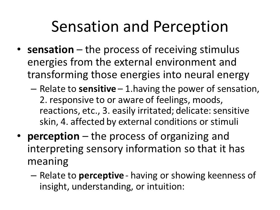 ap psych sensation and perception