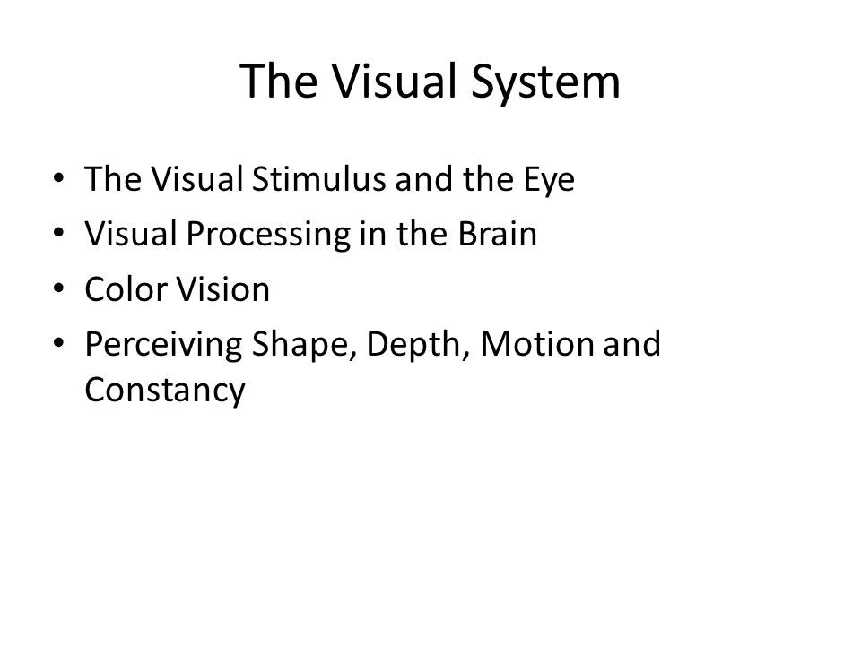 The Visual System The Visual Stimulus and the Eye