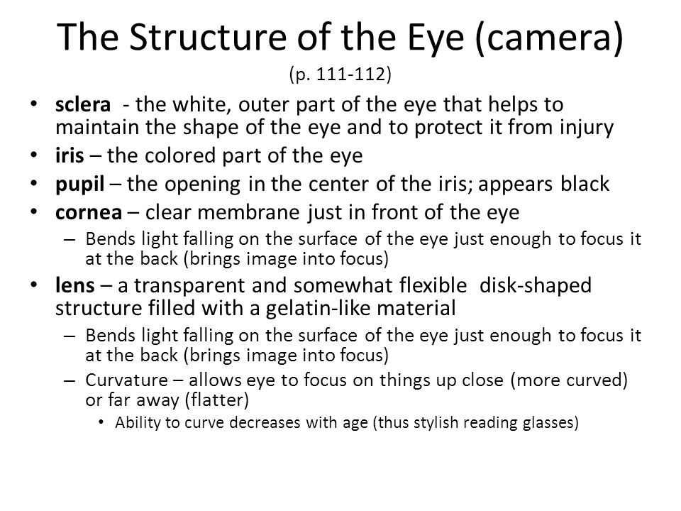 The Structure of the Eye (camera) (p )