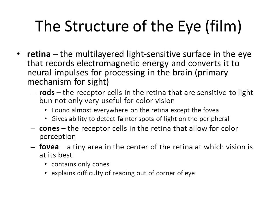 The Structure of the Eye (film)