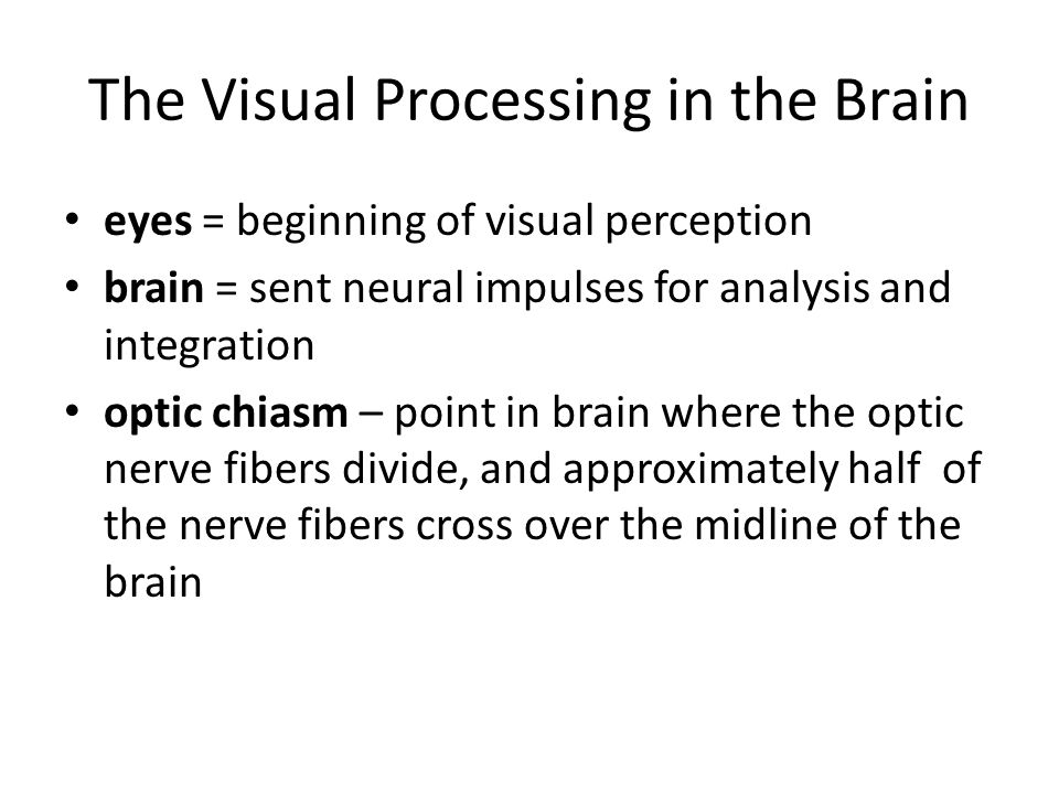 The Visual Processing in the Brain