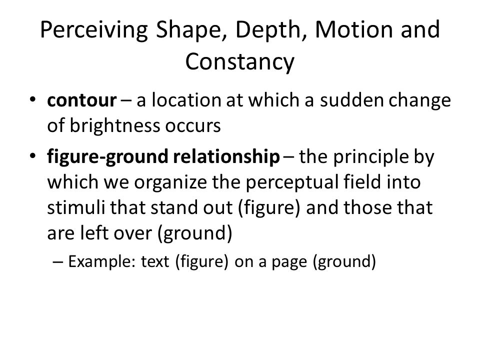 Perceiving Shape, Depth, Motion and Constancy