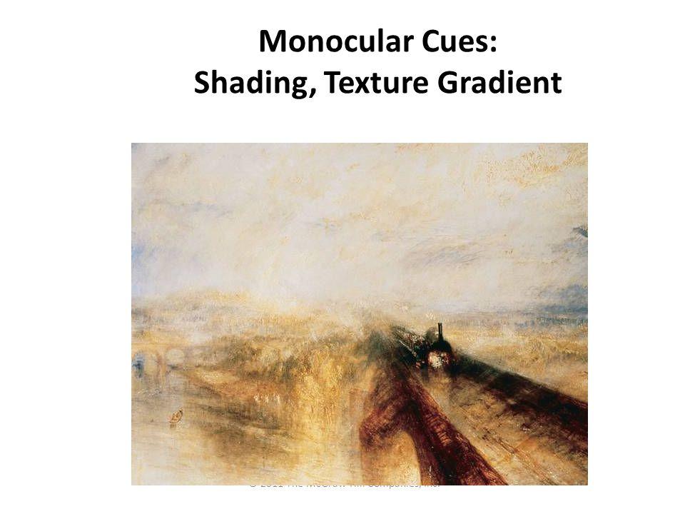 Monocular Cues: Shading, Texture Gradient