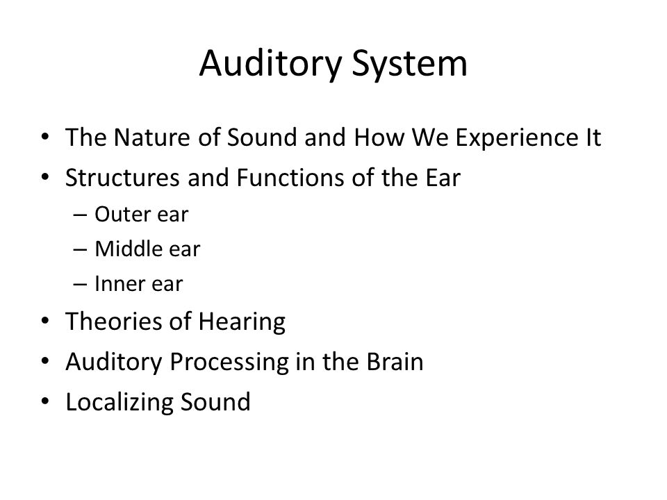 Auditory System The Nature of Sound and How We Experience It