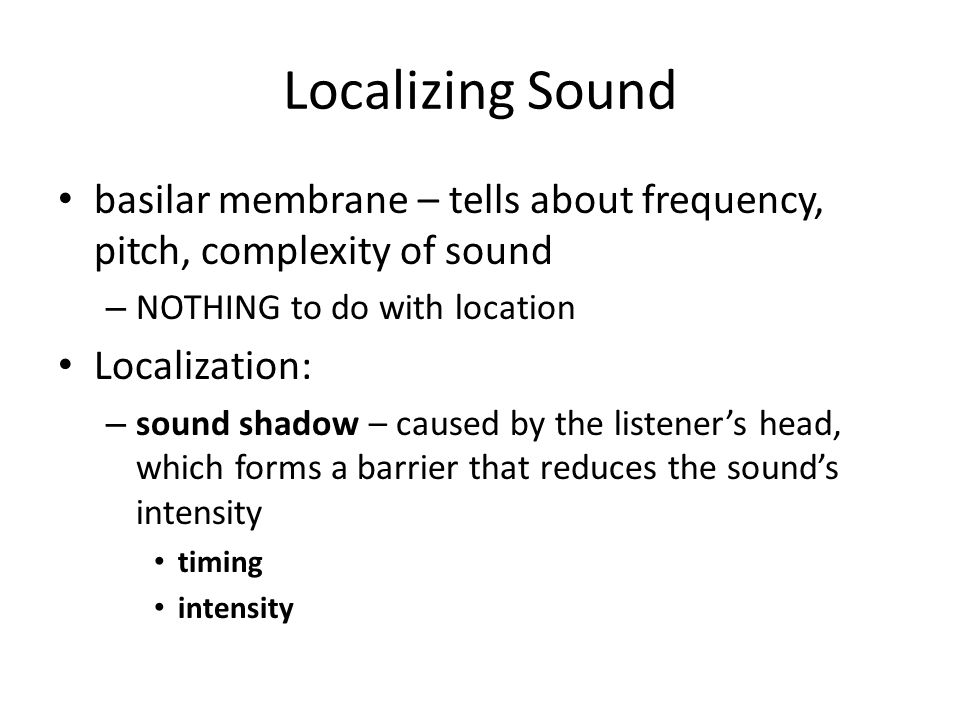 Localizing Sound basilar membrane – tells about frequency, pitch, complexity of sound. NOTHING to do with location.