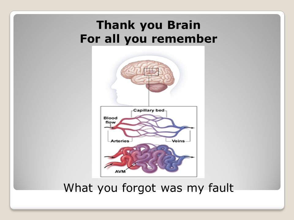 Thank you Brain For all you remember What you forgot was my fault