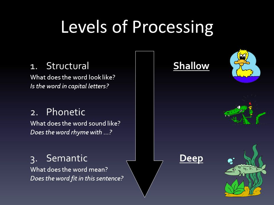 Levels of Processing Structural Shallow Phonetic Semantic Deep