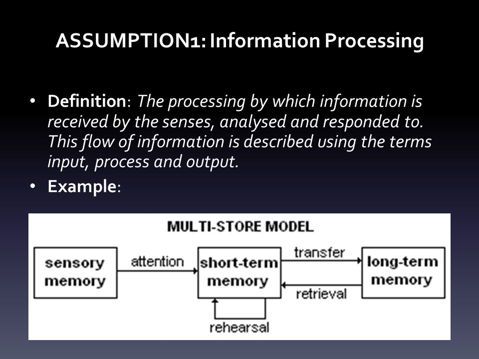 ASSUMPTION1: Information Processing