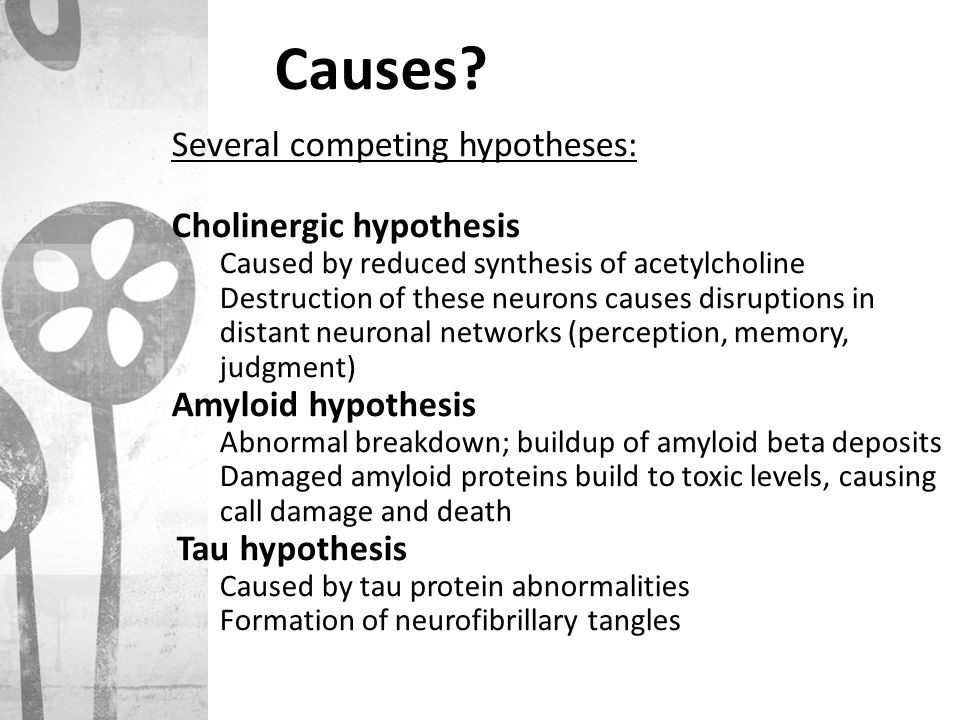Causes Several competing hypotheses: Cholinergic hypothesis