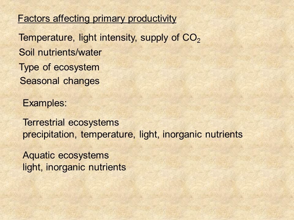 Factors affecting primary productivity