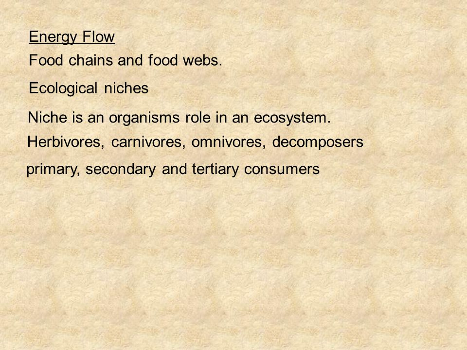 Energy Flow Food chains and food webs. Ecological niches. Niche is an organisms role in an ecosystem.