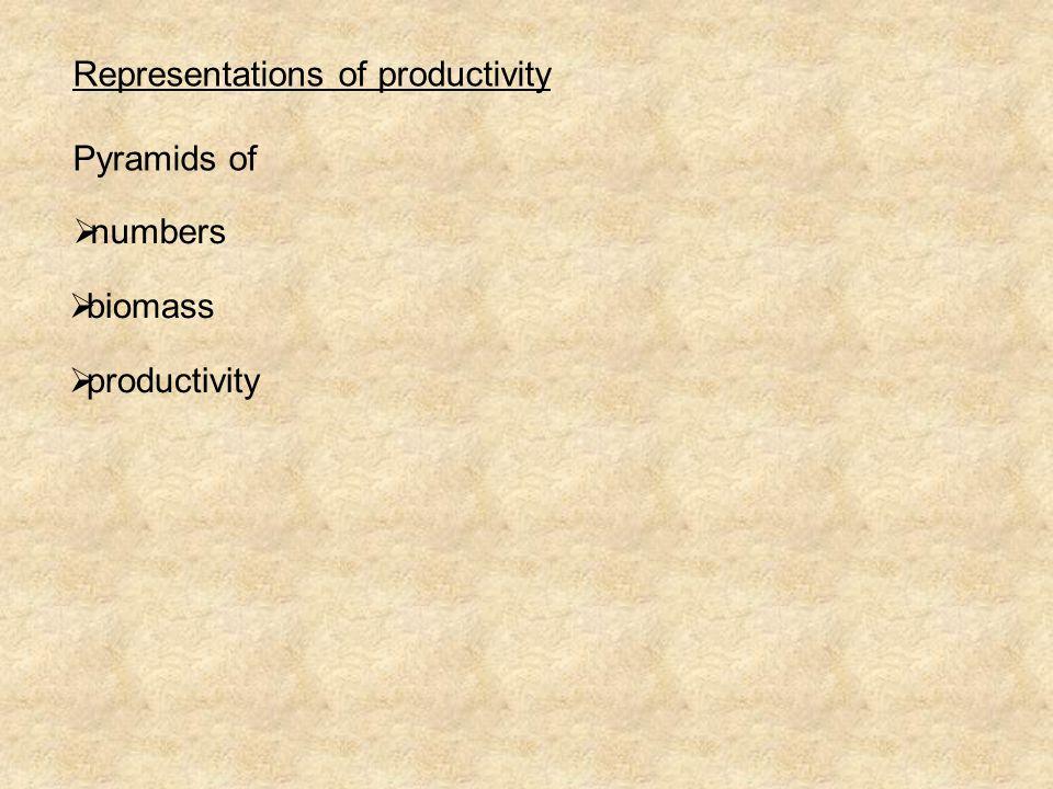 Representations of productivity