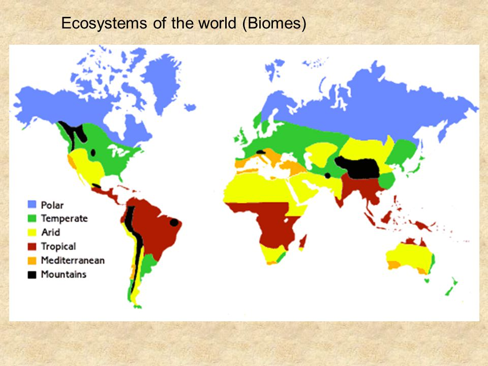 Ecosystems of the world (Biomes)