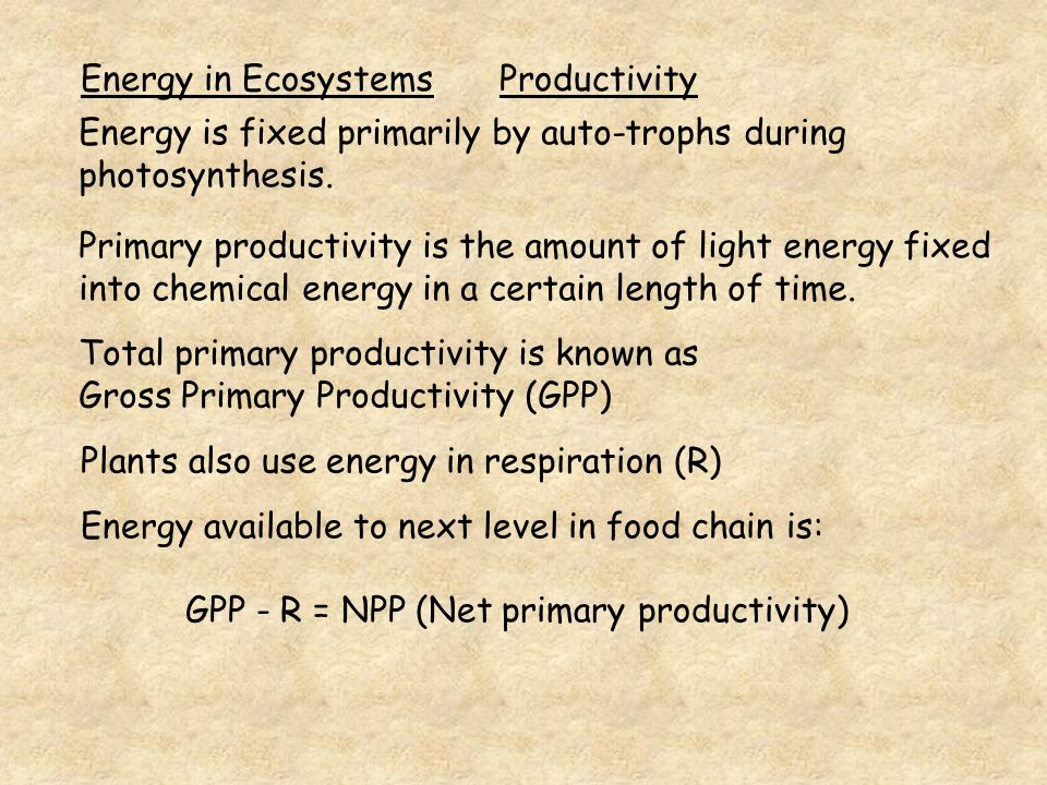 Energy in Ecosystems Productivity