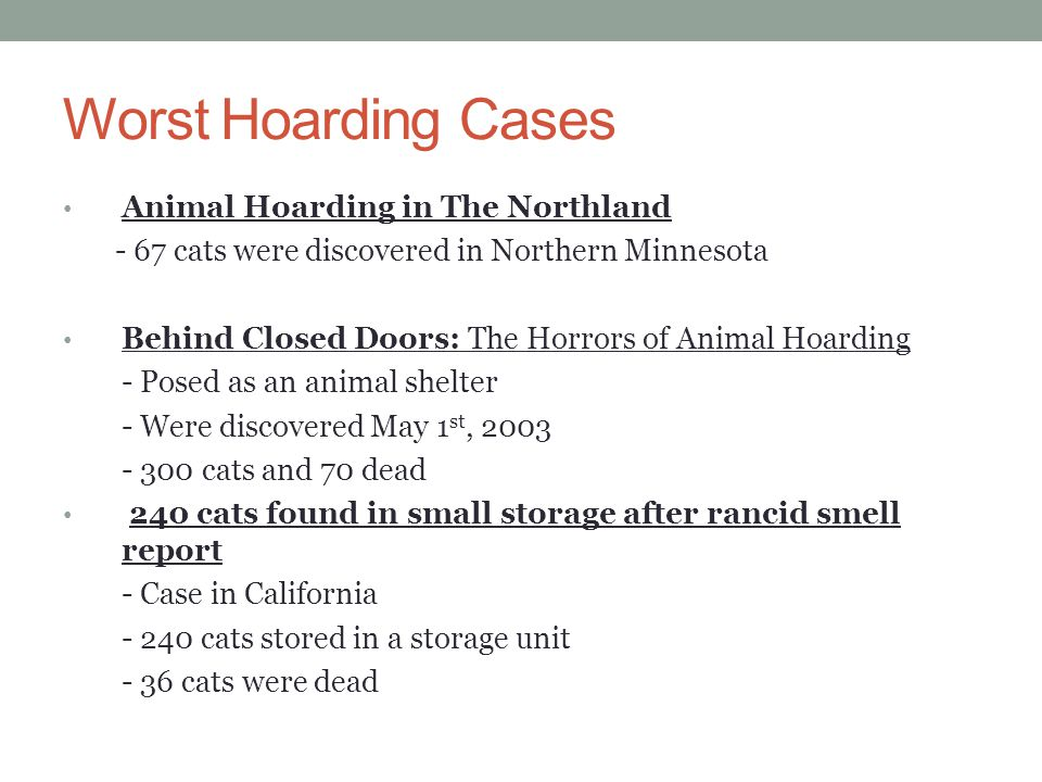 Worst Hoarding Cases Animal Hoarding in The Northland