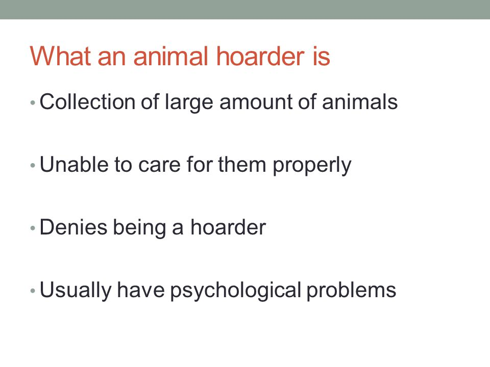 What an animal hoarder is