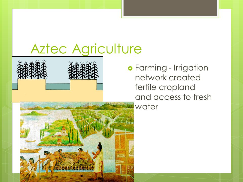 Aztec Agriculture Farming - Irrigation network created fertile cropland and access to fresh water