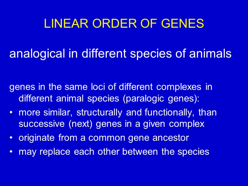 analogical in different species of animals