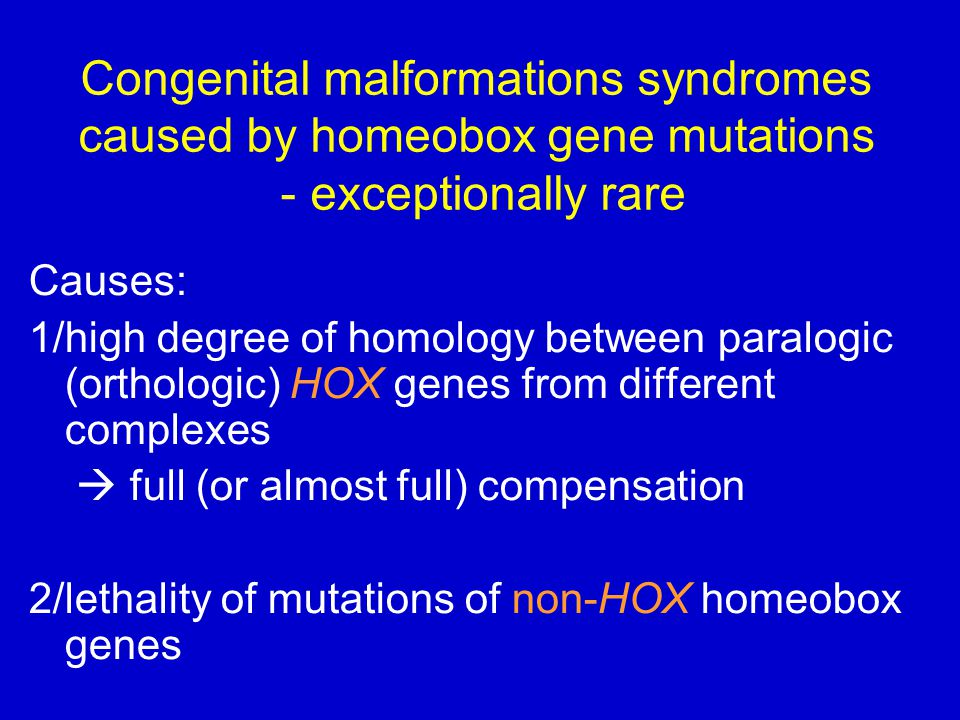 Congenital malformations syndromes caused by homeobox gene mutations - exceptionally rare