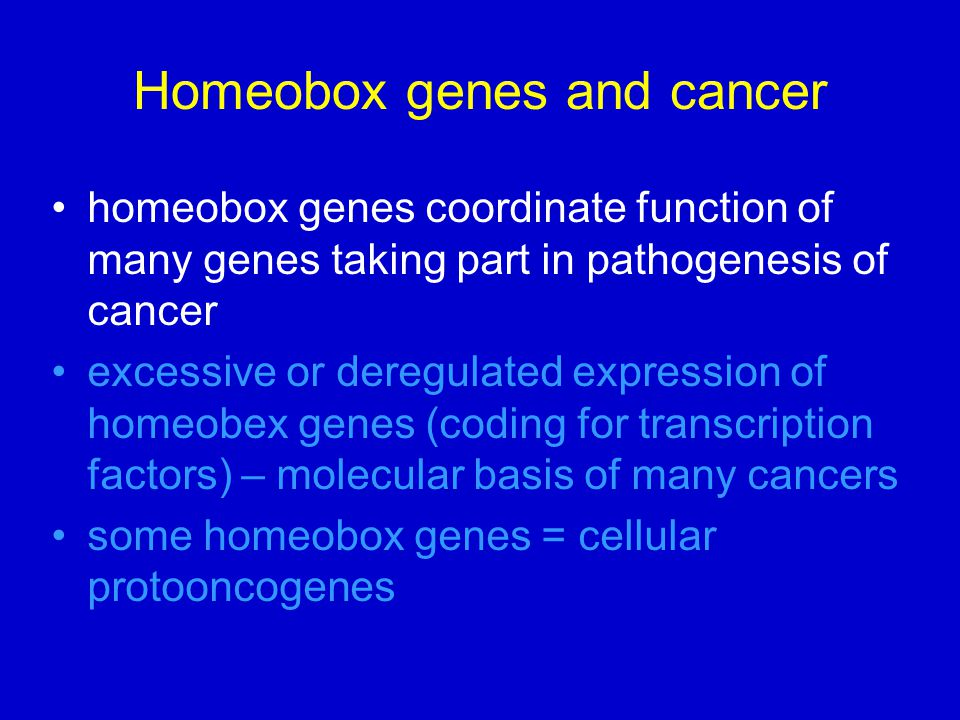 Homeobox genes and cancer
