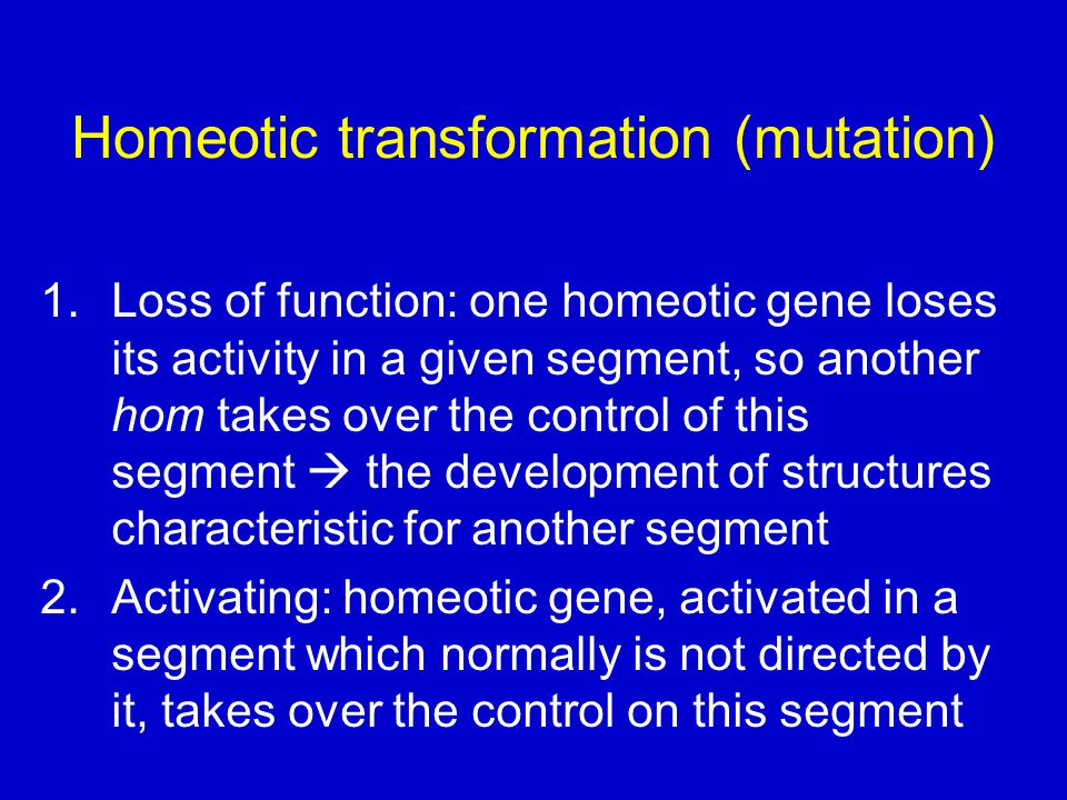 Homeotic transformation (mutation)