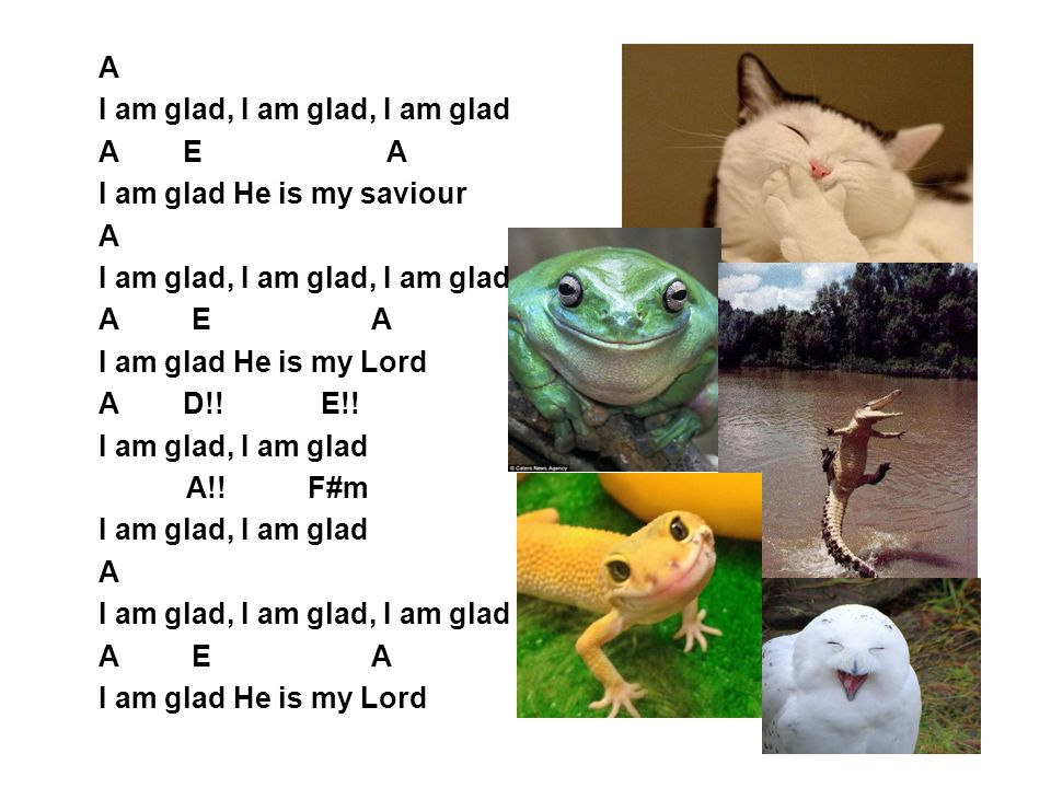 A I am glad, I am glad, I am glad. A E A. I am glad He is my saviour.