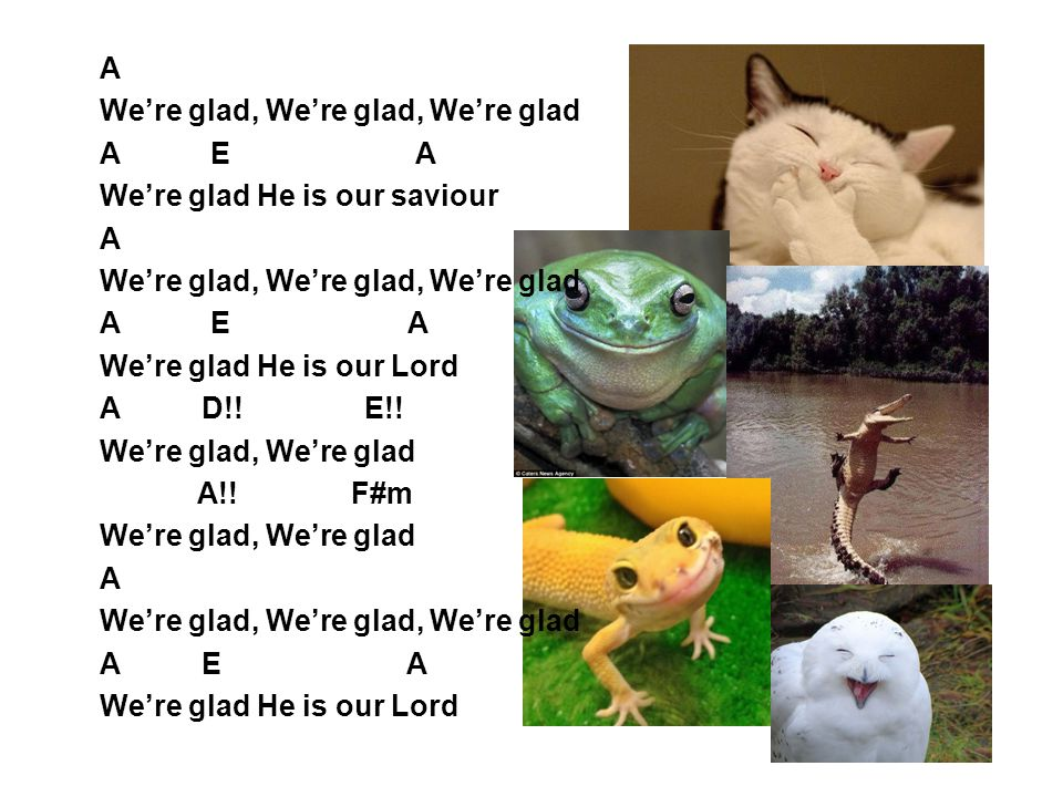 A We're glad, We're glad, We're glad. A E A. We're glad He is our saviour.