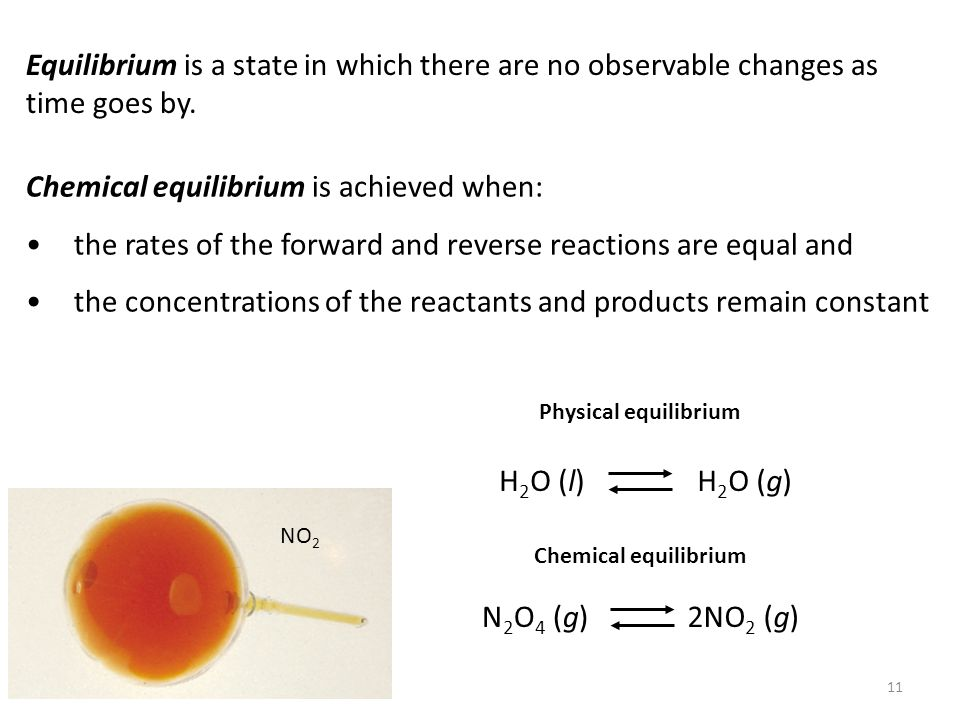 Chemical equilibrium is achieved when: