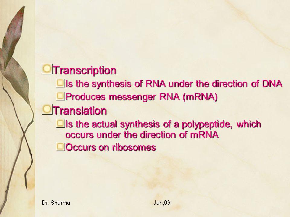 Transcription Translation