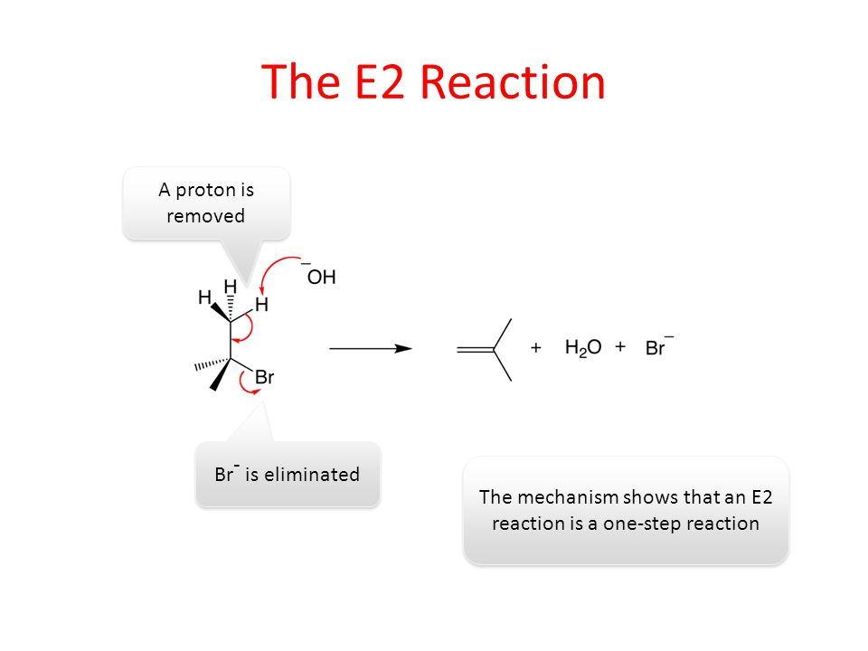 The mechanism shows that an E2 reaction is a one-step reaction