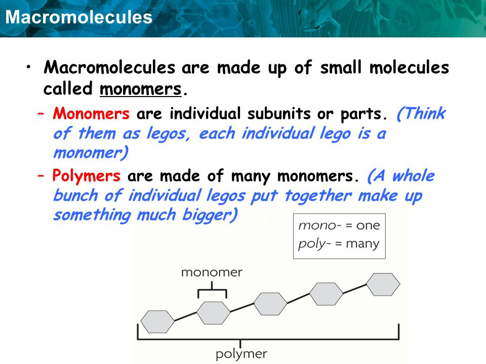 Macromolecules are made up of small molecules called monomers.
