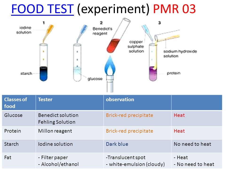 FOOD TEST (experiment) PMR 03