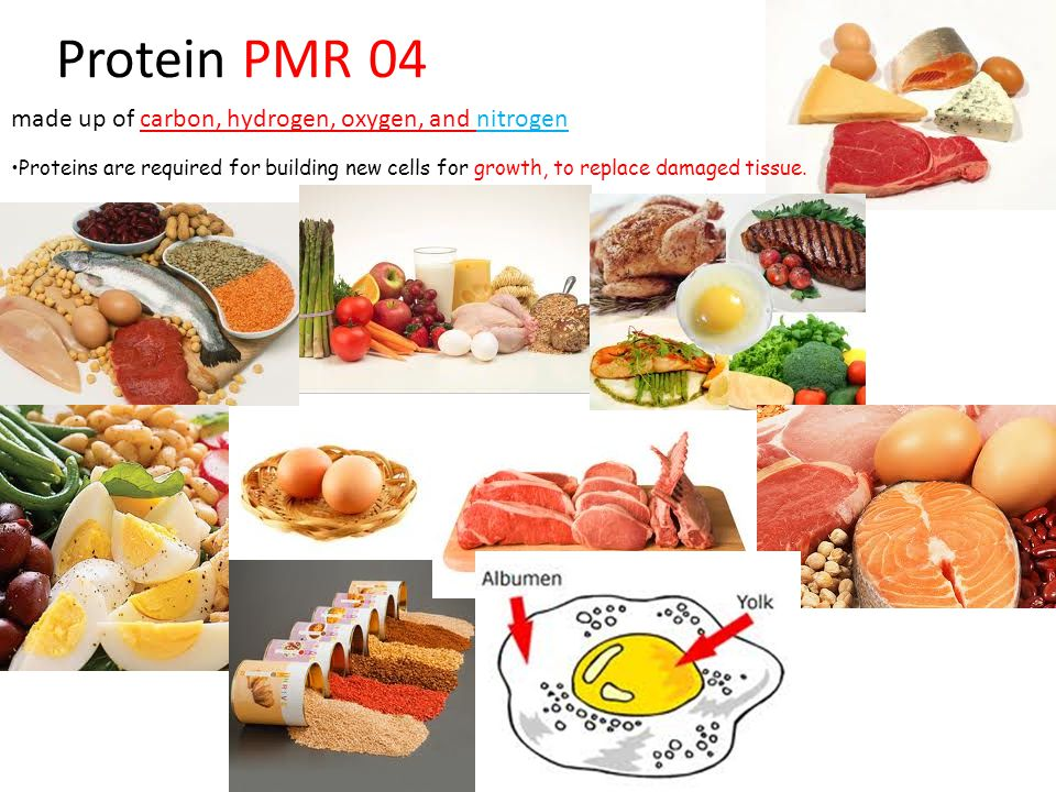 Protein PMR 04 made up of carbon, hydrogen, oxygen, and nitrogen