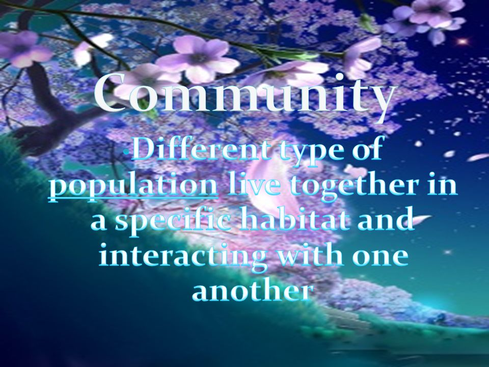 Community Different type of population live together in a specific habitat and interacting with one another.