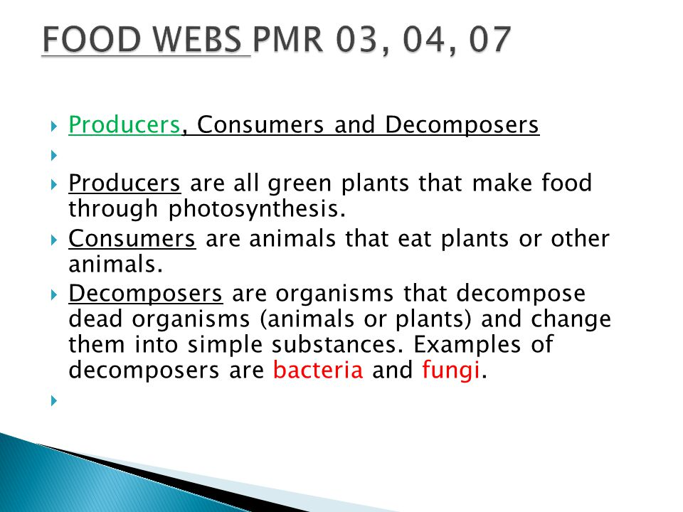 FOOD WEBS PMR 03, 04, 07 Producers, Consumers and Decomposers