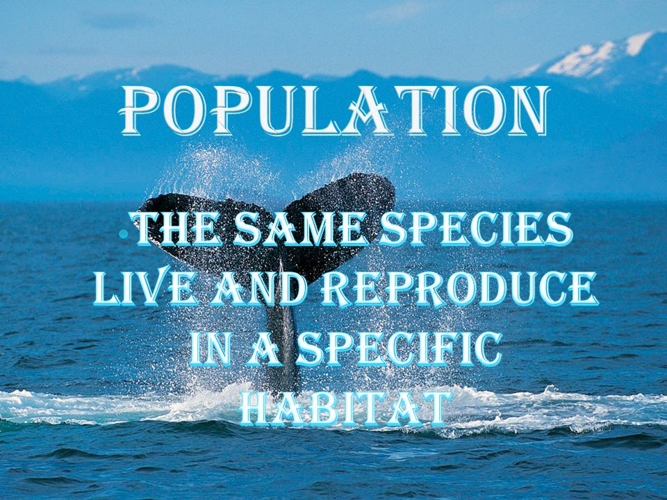 The same species live and reproduce in a specific habitat