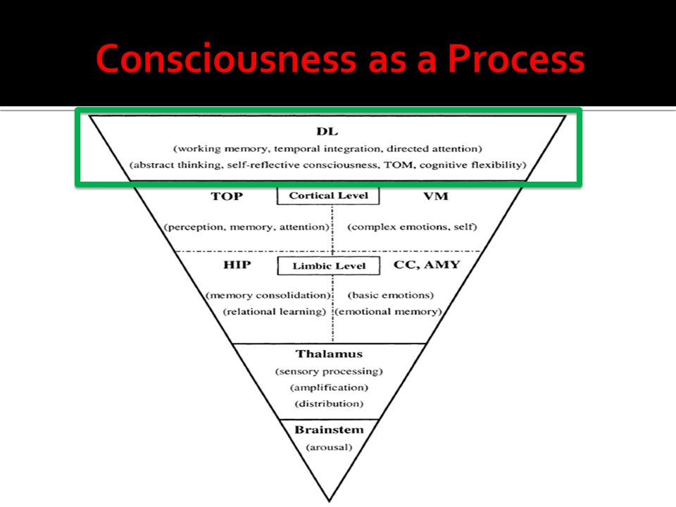 Consciousness as a Process