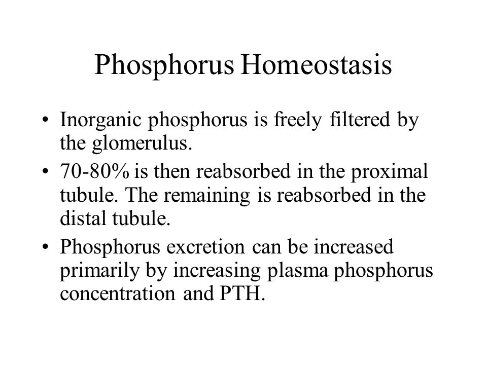 Phosphorus Homeostasis