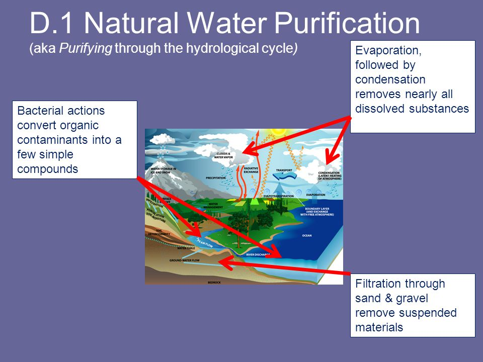 D.1 Natural Water Purification (aka Purifying through the hydrological cycle)