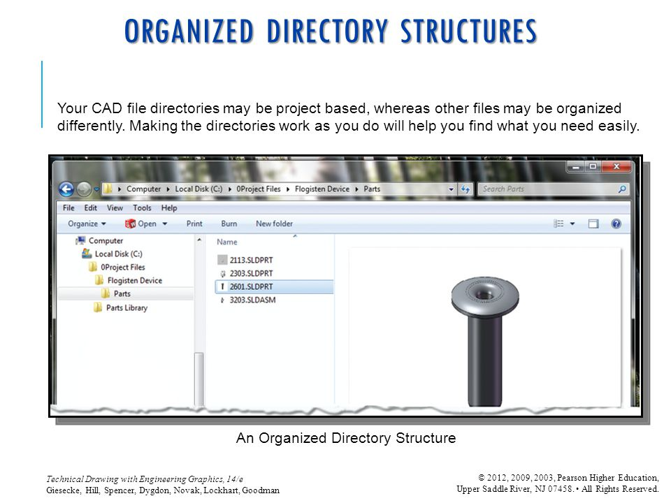 ORGANIZED DIRECTORY STRUCTURES