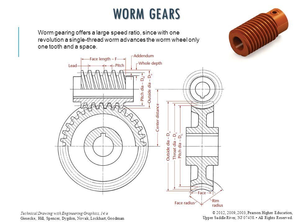 WORM GEARS Worm gearing offers a large speed ratio, since with one