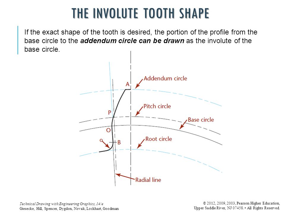 THE INVOLUTE TOOTH SHAPE