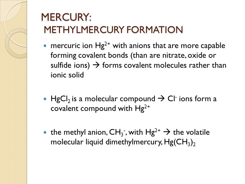 MERCURY: METHYLMERCURY FORMATION