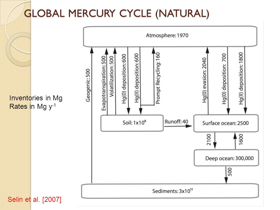 GLOBAL MERCURY CYCLE (NATURAL)